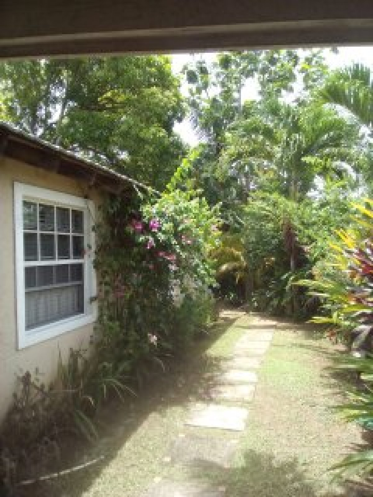 3 bedroom house 4 bathroom for rent in orange bay country