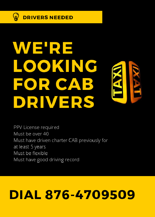 Driver Needed With Taxi Charter Experience