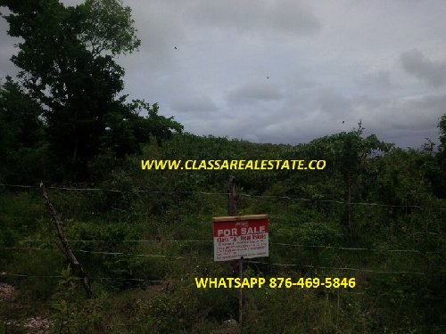 3/4 Acre Lot With Ocean View