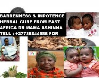 Barrenness And Impotence Spiritual And Herbal Cure