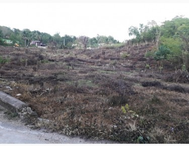 2 Acres Of Land For Sale In Friendship, St. James