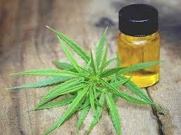 Cbd Oil For Cancer Treatment