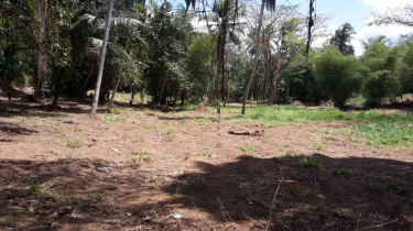 5.5 Acres Of Land For Sale (Has 2 Rivers)