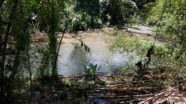 5.5 Acres Of Land For Sale (Has 2 Rivers) Land Bog Walk