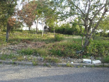 Approx. 1/4 And 1/4 Acre Plus Lots