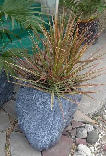 Beautiful Eunice Planter For Sale