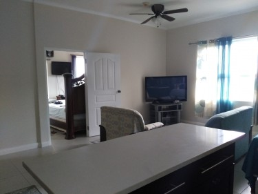 Deluxe1 Bedroom Apt (Semi- Furnished )