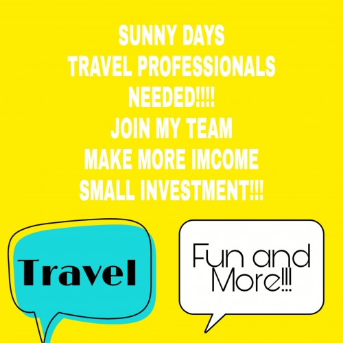 Looking For Travel Agent Who Work From Home.