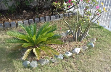 Landscaping And Garden Stones For Sale By The Bag