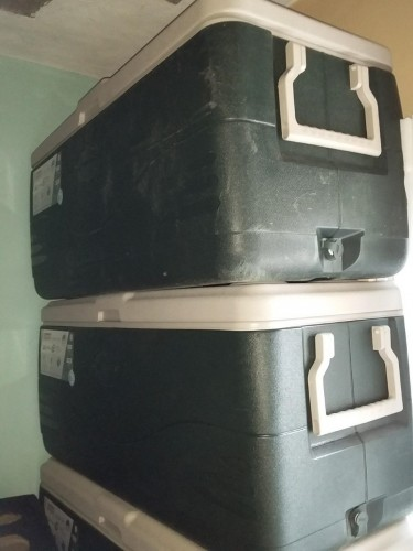 150 Quarts Coleman Cooler Igloo