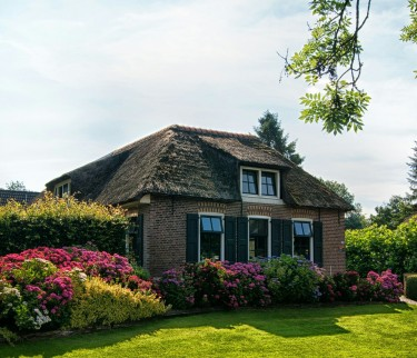 Beautifully Landscape Your Home