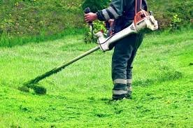 Lawn Cutting & Hedge Trimming