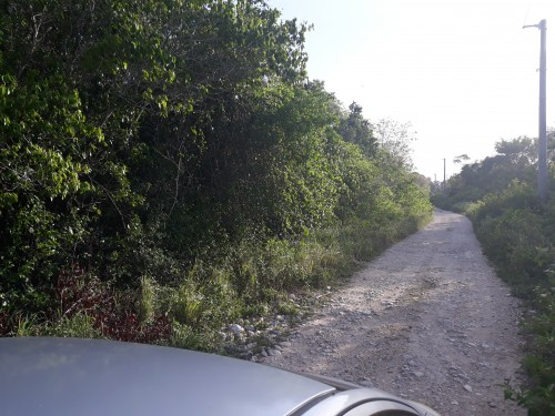 2 Half Acre Beach View Residential Lots