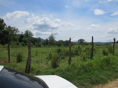 115 Acres Of Land