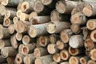 Available Wood Logs/Shores/Posts For S500JMD