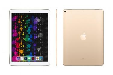 Brand New Apple 10.5-inch IPad Pro Wi-Fi 64GB Gold