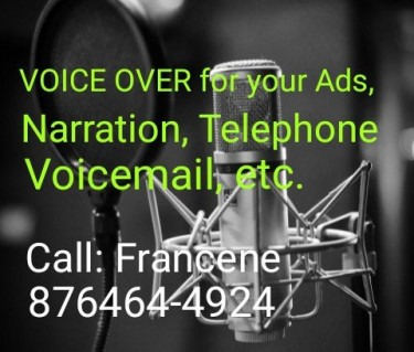 Voice Over For Advertisments, Audio Presentation