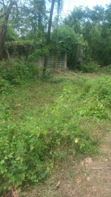 9.5 Acres Of Main Road Land Great For Real Estate