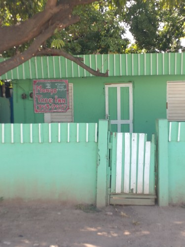 Mango Tree Inn, JA * Room For Rent*