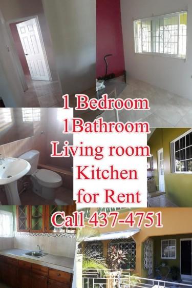 1 Bedroom 1 Bathroom, Kitchen & Living Room