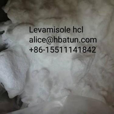 ProcaineBenzocaineLidocaine +86-15511141842
