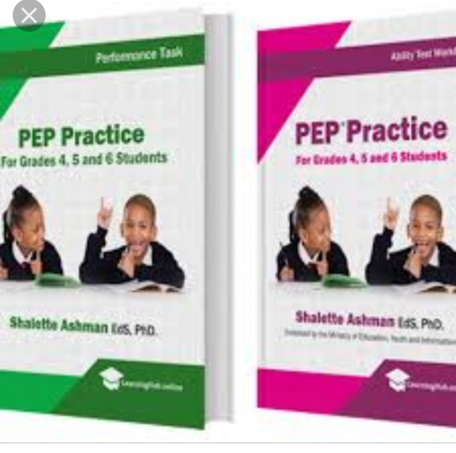 PEP CLASSES FOR GRADES 4 TO 6