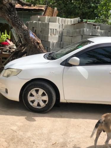2009 Corolla Axio
