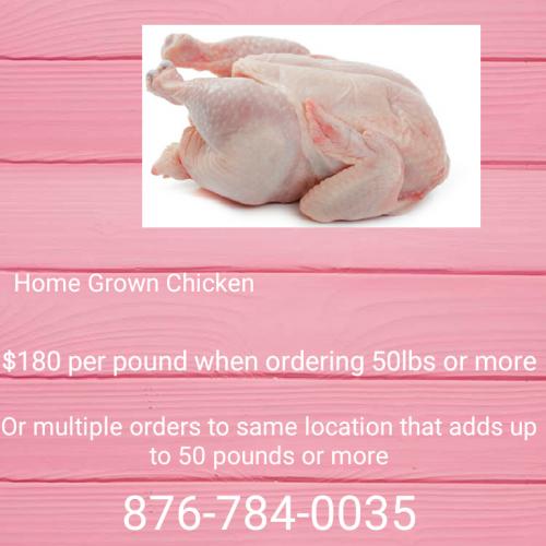 Home Grown Chicken