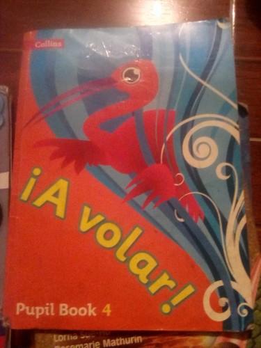 Used Grade 4 SBook: A Volar Pupil Book 4