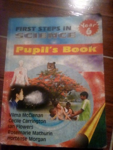 Used Grade 6 Book: First Steps In Science