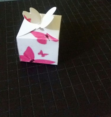 Cake Boxes, Programs, Invitations