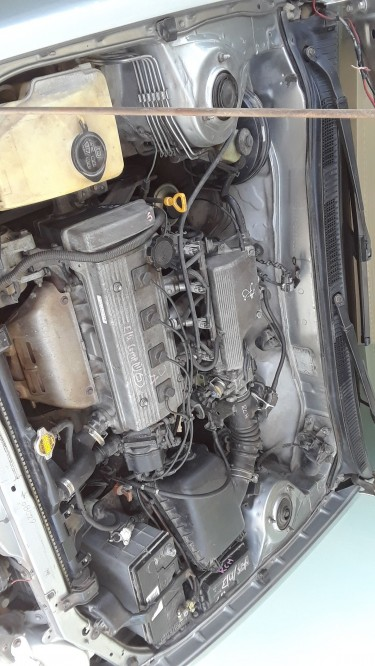 1997 Toyota Corolla (111 Shape)