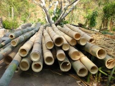 Bamboo Wood, Cut Stone Etc