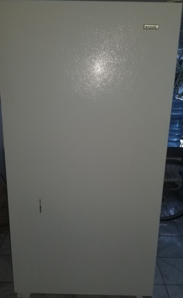 FRIGIDAIRE Standing Freezer Appliances Kingston