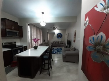 1 Bedroom Apartment Fully Furnished