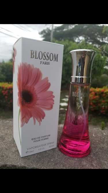 Start You Own Fragrance Business