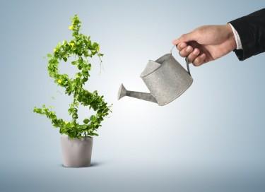 Offer Loan