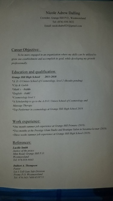 Seeking A Job