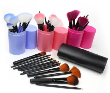 12 Peice Brush Set With Carrying Case
