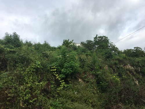 Sloping Residential Lot 0.6 Acres