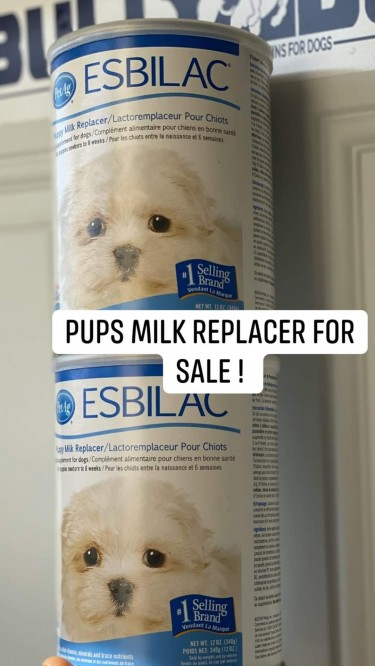 Esbilac Milk Replacer For Puppies For Sale