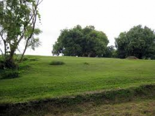 1 ACRES LAND W/ GRASS FOR HOUSE OR FARMING