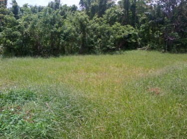 1.25 ACRE OF LAND FOR SALE