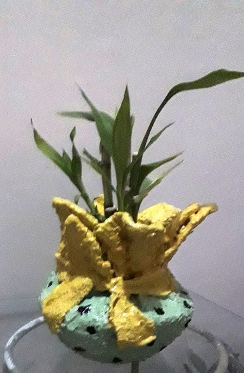 Desinger ,flower Pots
