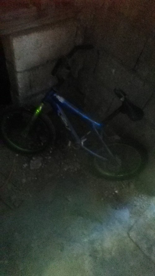 Bicycle Small