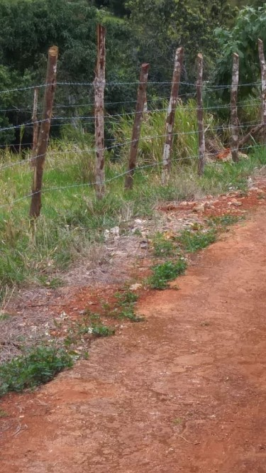 1/4 Fence In Land For Leases Small Crops Only