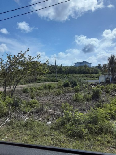 10 Residential Lots For Sale