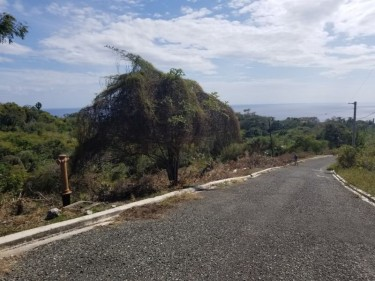 Lot 371 Culloden, Whitehouse, Westmoreland