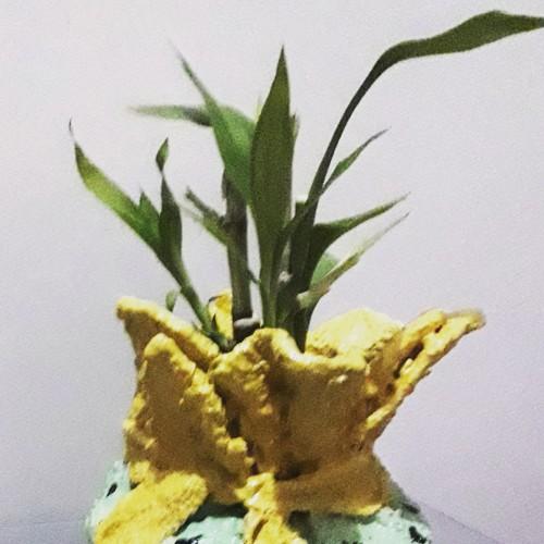Miniature Flowerpots/pen Holders