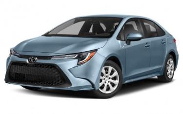 2019 Toyota Corolla New